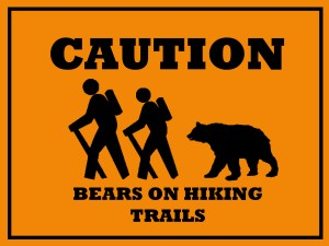 watch for bears when camping