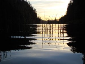 kathleen lake campground by vancouver island camping